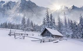 بررسی اقلیم سرد قطبی