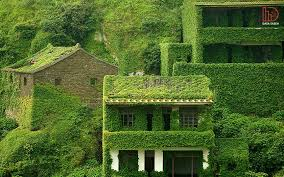 پاورپوینت بررسی زیبایی از منظر معماری